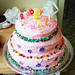 Sierra's Birthday Cake