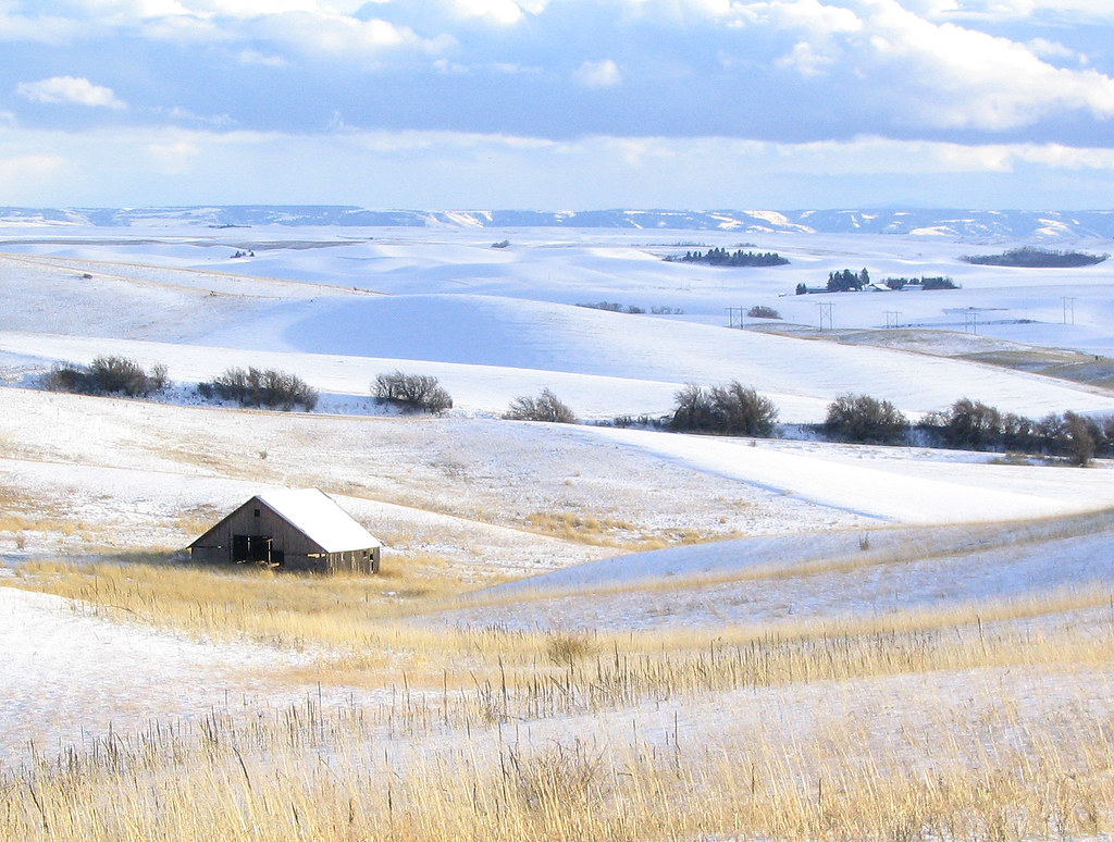 snowy palouse barn | This is one of the first shots I took