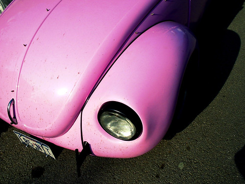 The Pink Bug | by Special
