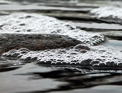 ...River Bubbles... | by Random Images from The Heartland