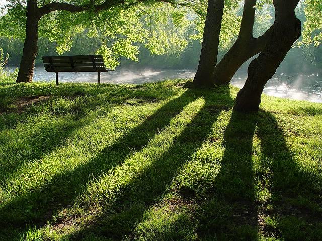 bench trees & shadow | zen Sutherland | Flickr