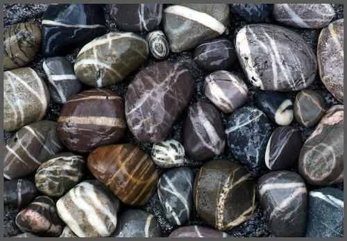 Beach Stones Nova Scotia The Incredible Diversity Of