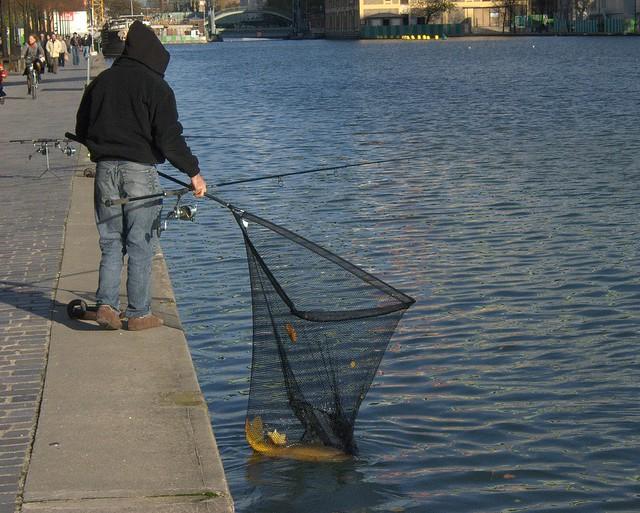 Bien proportionné la chaise pour la pêche acheter est bon marché