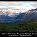 The Beauty of the Arctic National Wildlife Refuge