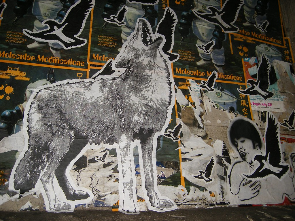 Wolf and Boy With Manb...
