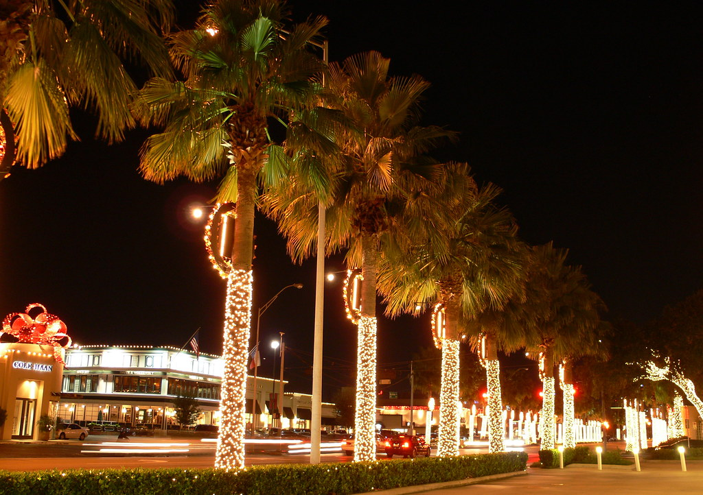 Lights on Westheimer | Christmas lights on palm trees ...