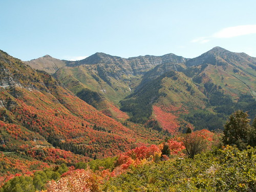 Fall in Wasatch Mountains | by msn678
