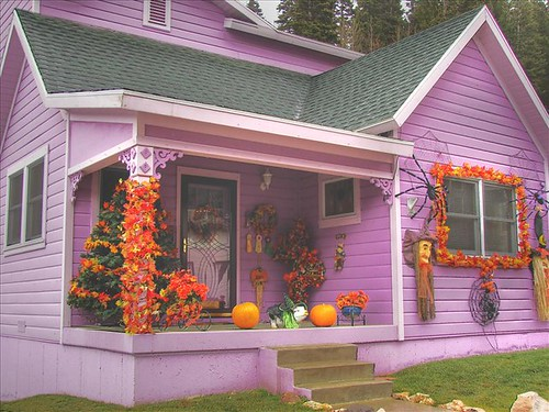 This purple house stood out like a sore thumb | by Carlos A Merighe