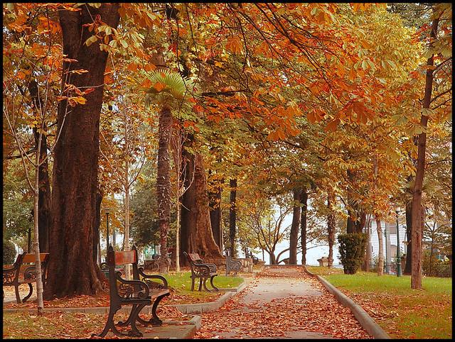 Udazkena parke izkutuan oto o en el parque escondido for Jardines la cartuja el puig