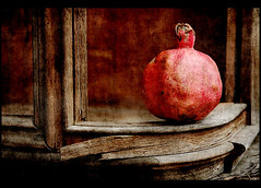 Still Life (Punica granatum) | by AlexEdg