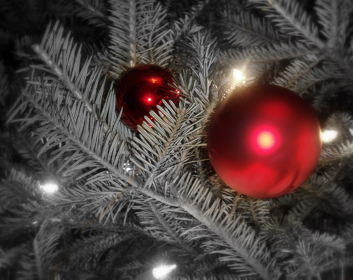 Christmas Ornament on Fir Tree | by stephend9