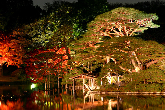 Japanese garden at night 2 Yumi Flickr
