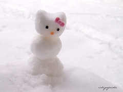 snow kitty | by nina.jsc
