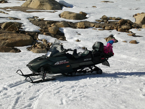 Arctic Cat   Stroke