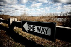 one way | by Lastexit