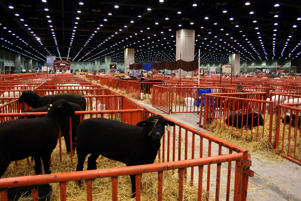 The North American International Livestock Exposition Th
