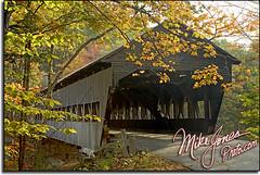 Covered Bridge 9728