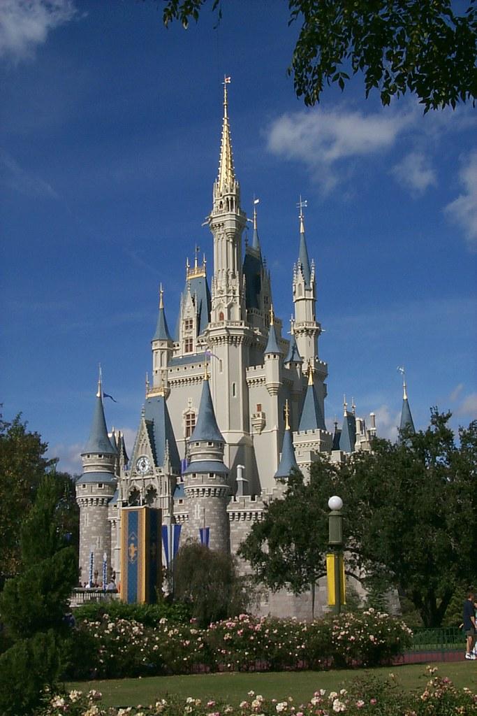 Image Result For Orlando Magic