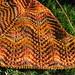 Autumn Waves Shawl - in progress