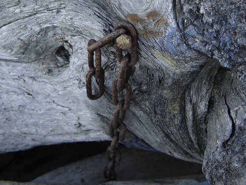 chained_driftwood | by triviaqueen