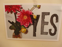 YES | by ALexis Wheeler