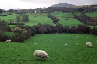 199603 254 Ireland - Co Kerry | by williewonker