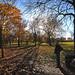 Queens park autumn pano 2
