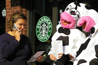Dairy Cows Ask Starbucks to Hold the Hormones (6) | by goodfoodandh2o