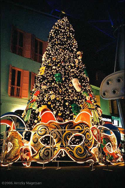 Get A Christmas Tree