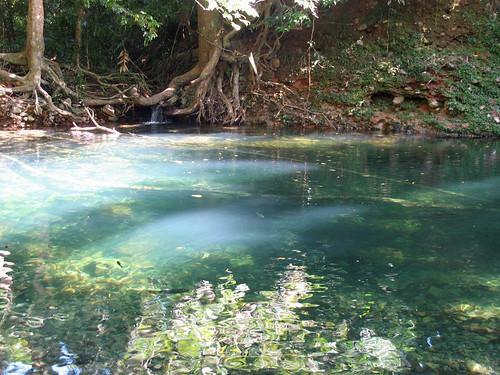 Emmagen Creek Waterhole. | Beautiful swimming hole in the Da… | Flickr
