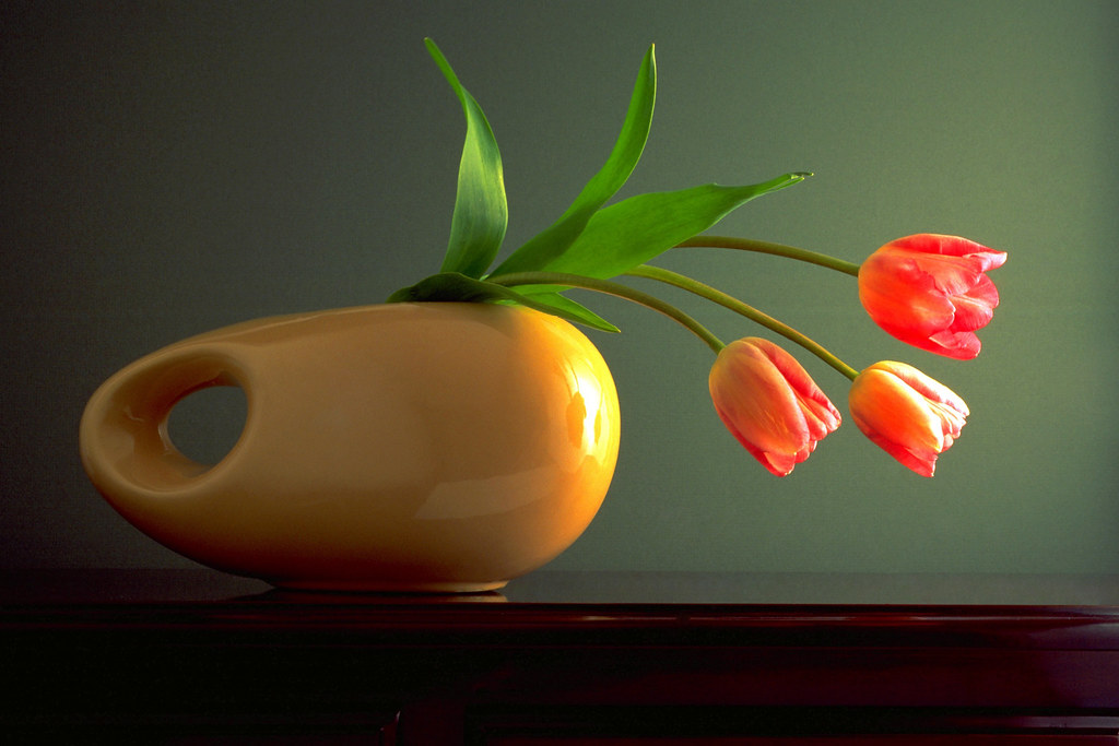 Three Tulips In Horizontal Vase Lsuffy Flickr