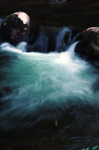 Whitewater in Sillhouse Branch | by gawagley