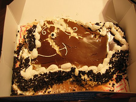 Melted Ice Cream Cake
