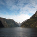 the view from the sea milford sound