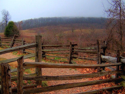Switch-back Gate and the Meadow Beyond | by ☩ D L Ennis