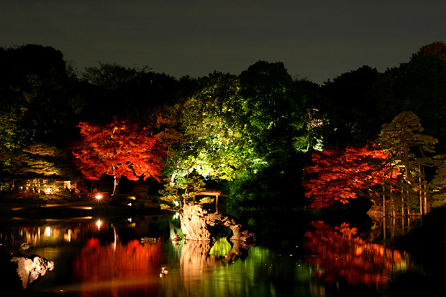 Japanese garden at night 1 Yumi Flickr