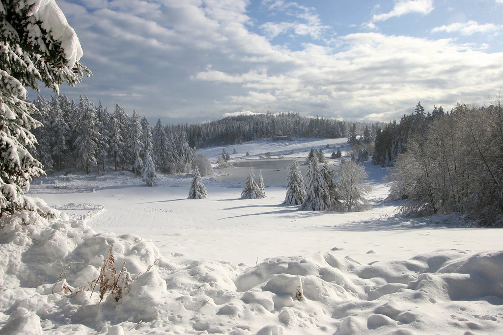 Winter wonderland we went to orcas island in the san for Immagini desktop inverno