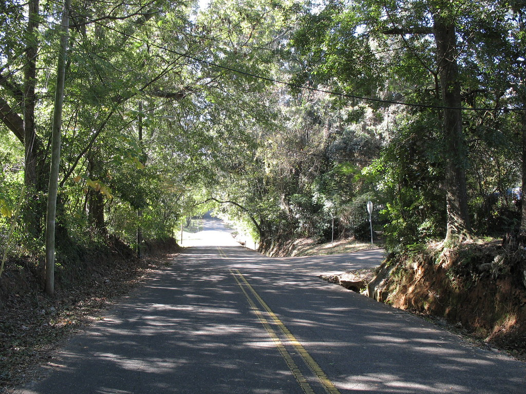 a canopy road