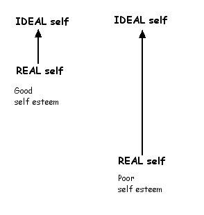 The Ideal And The Reality