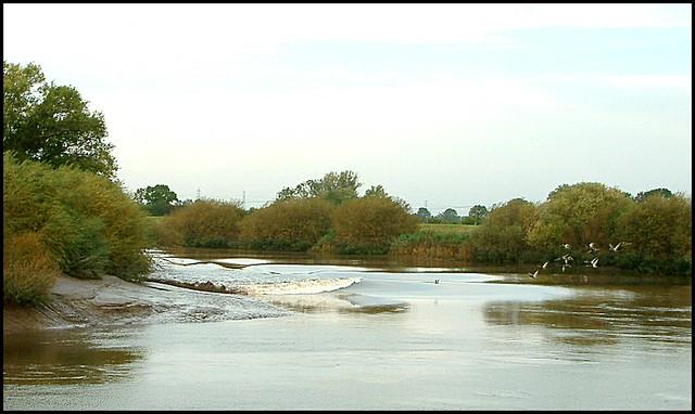 The Aegir River Trent Morton Gainsborough Lincolnshire