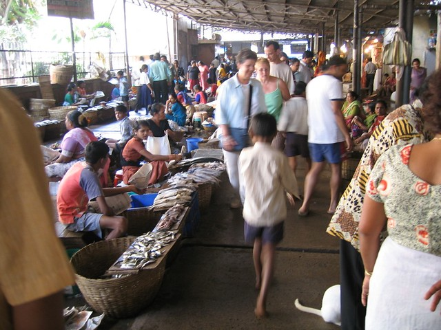 panaji goa fish market madhav pai flickr. Black Bedroom Furniture Sets. Home Design Ideas