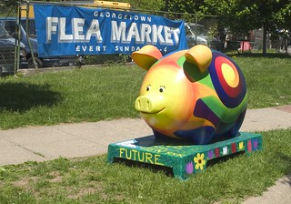 This Little Piggy Comes to DC! | by DCist