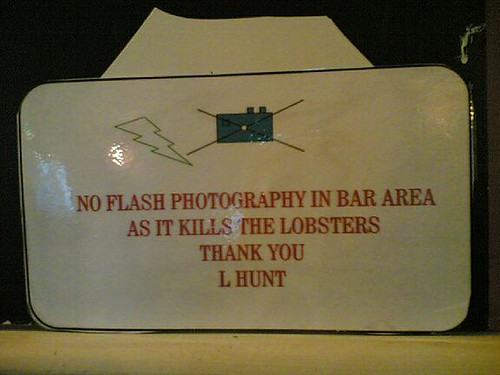 Flash kills lobsters dead! | by jkottke