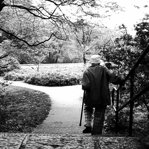 old man in the park | by David Salafia