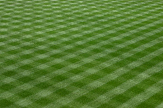 Best White Line Paint For Grass