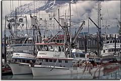 Valdez Marina 5605