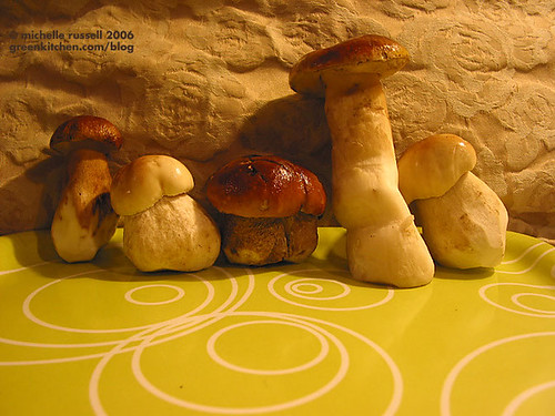 Boletus edulis, Porcini, King Bolete | by Green Kitchen