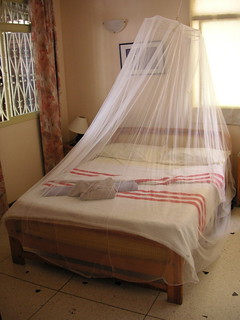 Mosquito net over our bed | by blmurch