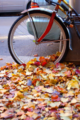 Front Wheel, West Village, New York | by Northcountry Boy