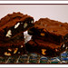 Brownies for Chocoholics